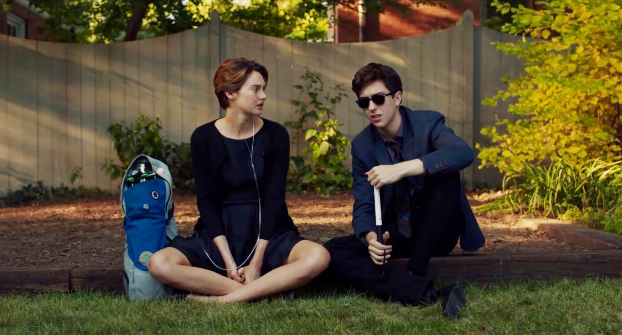 fault in our stars 8