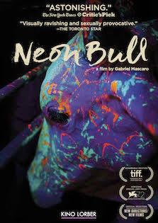 Neon_Bull_cover