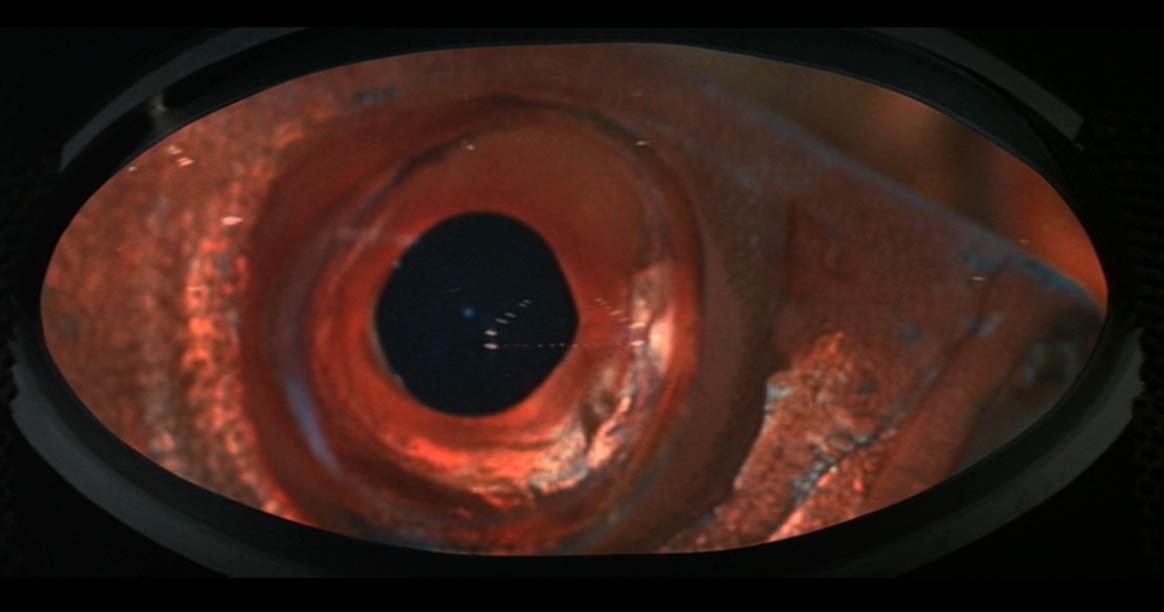 neptune-factor-giant-fish-eye